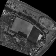Stadium_NDVI_transparent_mosaic_nir